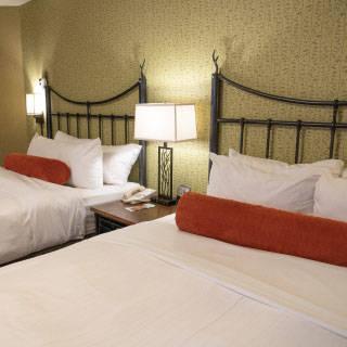 Standard 2 queen room - Direct rate